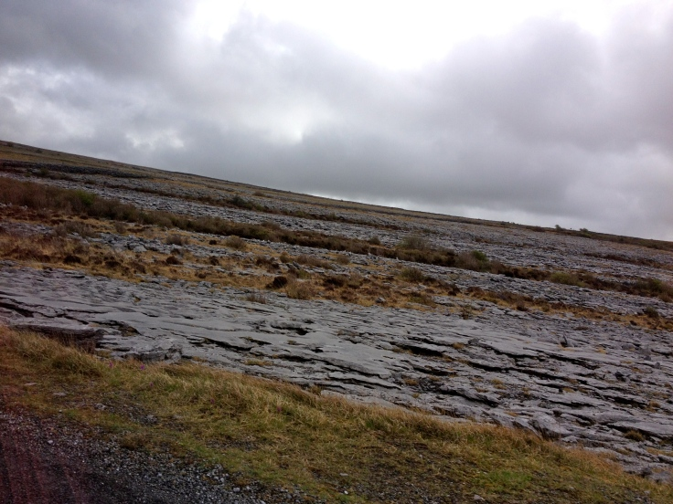 The Burren. Flat rock as far as the eye can see.