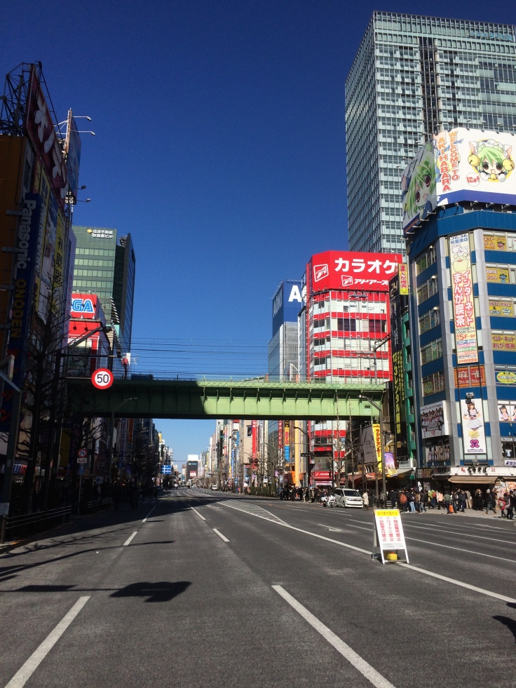 Akihabara gets more colorful the further you go.