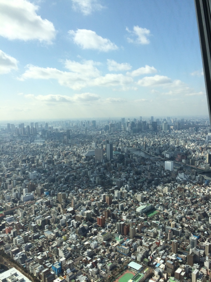 The view from the first deck of the Skytree.